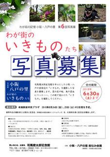 2018ikimono.jpg